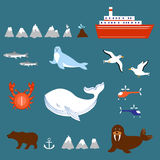 Marine set seagulls, salmon, whale, seal, walrus, ship, volcano, geyser, helicopter, crab  on white background Royalty Free Stock Images