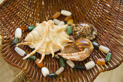 Marine shells and natural stones beads in  straw basket Royalty Free Stock Photography