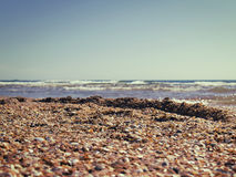 Marine shelly beach in summer sunlight Stock Images