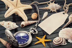 Marine still life. Stock Photos