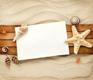 Marine still life. Few marine items on a wooden boards against sandy background Stock Photography