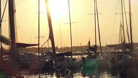 Marine sunset with sailboats and flying birds stock video footage