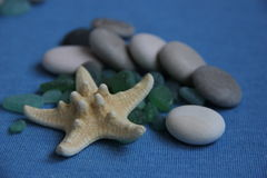 Marine theme. Variations with stones gems starfish can be used as a screensaver Stock Image