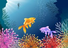Tropical fish in coral sea. Marine-themed background with an underwater scene with exotic fish, anemones and coral. Vector illustration Stock Images