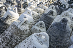 Marine themes, white buoys on the shore in the winter. Close up Royalty Free Stock Photo