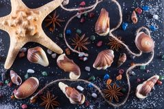 Marine topic on black stone. Candy in form of seafood with chocolate stones, sugar and anice.  stock photography