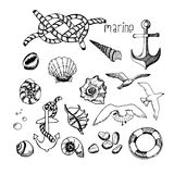 Marine topic hand drawn elements. Set of sea life elements Stock Images