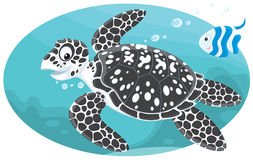 Marine turtle and coral fish Royalty Free Stock Images