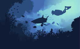 Marine Underwater Flora And Fauna Background. With swimming diver shark fishes and seaweeds vector illustration Royalty Free Stock Photo