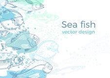 Marine vector background of nature sea fish royalty free illustration