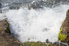 A marine wave Stock Photos