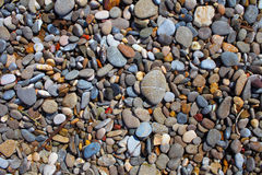 Marine wet pebbles for background Stock Images