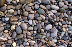 Marine wet pebbles of different colors. Marine Background Royalty Free Stock Photos