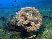 Marine wheel Stock Image