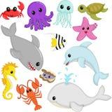 Marine wildlife animals. A vector illustration of marine wildlife animals cartoon Stock Photo