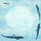 Marine wildlife wallpaper. Aquatic texture with swimming dolphins and a seal stock photos