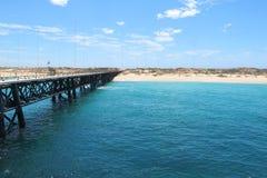 Marinegleicher, exmouth, West-Australien lizenzfreie stockbilder