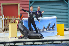 Marineland Stockfoto