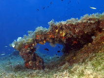 Marinelandschaft Stockbild