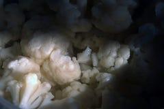 Marinerad styckblomkål i en saltvatten Arkivfoto