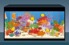 Marineriffaquarium mit Fischen und Korallen Steuern Sie Aquarium automatisch an Lizenzfreie Stockfotografie