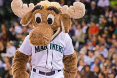 The Mariners Moose Mascot stock images