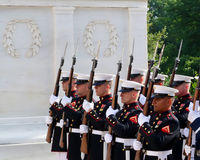 Marines at Arlington National Cemetery. Marines in dress uniform with bayoneted rifles during a ceremony at the Tomb of the Unknown Soldier at Arlington National stock image