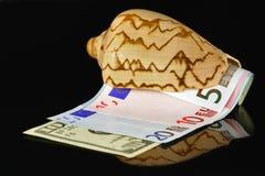 Marineschüssel mit Geld stockfoto