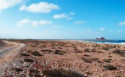 Marineschutzgebiet Dihamri, der Strand, Korallen, Oberteile, rote Berge, tauchend in der Socotrainsel, der Jemen Stockfoto