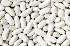 Marinha, haricot, ervilha branca, rim branco ou de feijões de Cannellini textu Foto de Stock Royalty Free