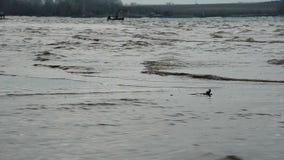 Marinheiro na tempestade vídeos de arquivo