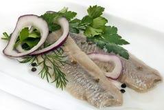 Marinierte Fische lizenzfreie stockbilder