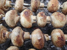 Marinierte Pilze Stockfotografie