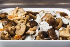Marinierte Pilze mit Zwiebel auf weißer Platte Lizenzfreie Stockfotos