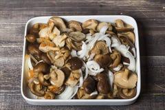 Marinierte Pilze mit Zwiebel auf weißer Platte Lizenzfreie Stockbilder