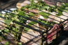 Mariniertes Fleisch mit Kräutern für Grill Lizenzfreie Stockfotos