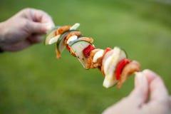 Mariniertes Huhn mit Frischgemüse shashlik Stockfotos