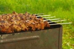 Mariniertes Schweinefleisch auf Grill Stockbilder