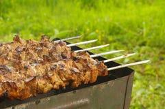Mariniertes Schweinefleisch auf Grill Stockbild