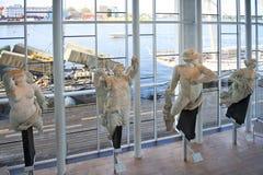 Marinmuseum Royalty Free Stock Image