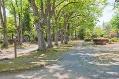 Marioka城堡, Marioka市,日本的前第二贝里 库存图片