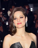 Marion Cotillard attends the `It`s Only The End Of The World Ju Stock Photos