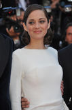 Marion Cotillard Royalty Free Stock Photo
