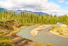 Marion River Alaska Royaltyfri Bild