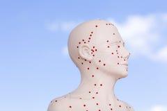 Marioneta china de la acupuntura contra el cielo azul Imagenes de archivo