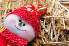 Marioneta de la Navidad Fotografía de archivo libre de regalías