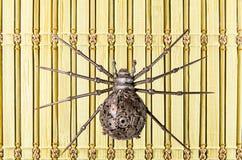 Marionetas de la araña del hierro Imagenes de archivo