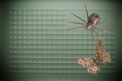 Marionetas de la araña y de la mariposa del hierro Foto de archivo