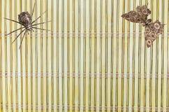 Marionetas de la araña y de la mariposa del hierro Imagen de archivo libre de regalías