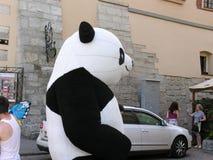 Marionetas de la panda Imagen de archivo libre de regalías